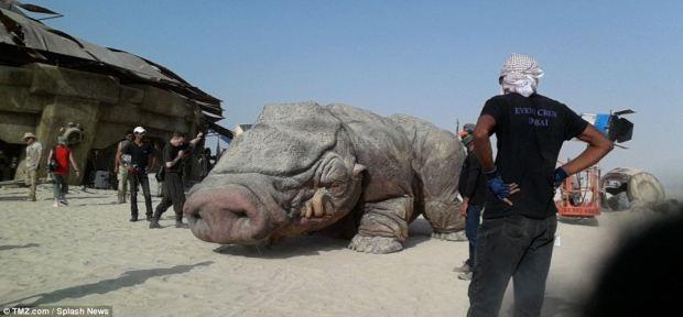 TMZ läckte bilden på grisen